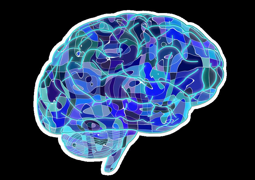 Creative illustration of the brain